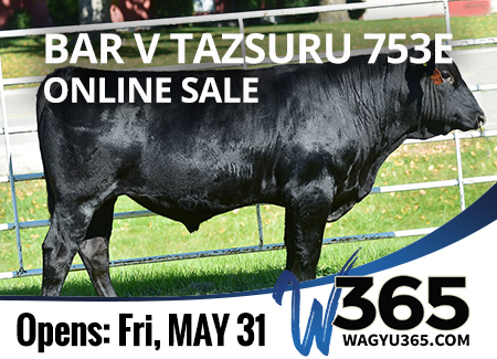 Bar V Tazsuru 753E Online Sale - 5/31/19 to 6/15/19