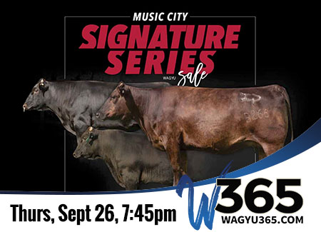 Music City Signature Series Wagyu Sale - 9/26/19