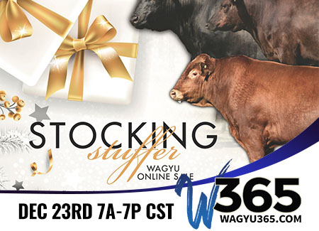 Stocking Stuffer Wagyu Online Sale