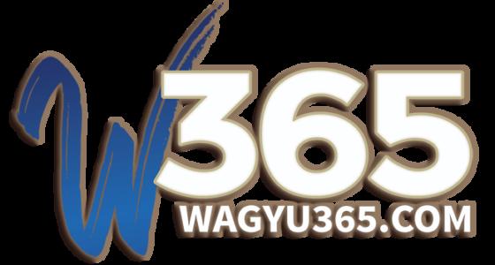w365-logo-final-light-effects