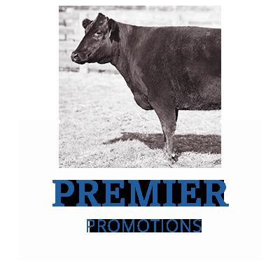 W365 Premier Promotions